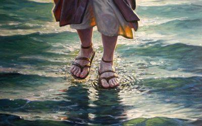 Enseñanza de Fe, confianza y amor en Jesucristo